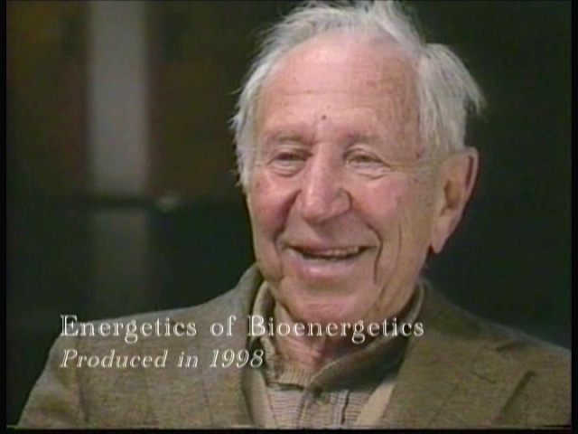 energeticsofbioenergetics-photo