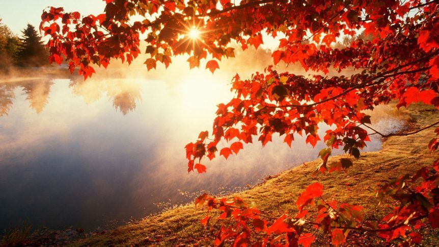 autumn-morning-862x484